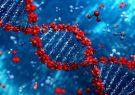 بررسی ژنتیکی بیماری پسوریازیس با استفاده از تکنیک NGS امکان پذیر شد
